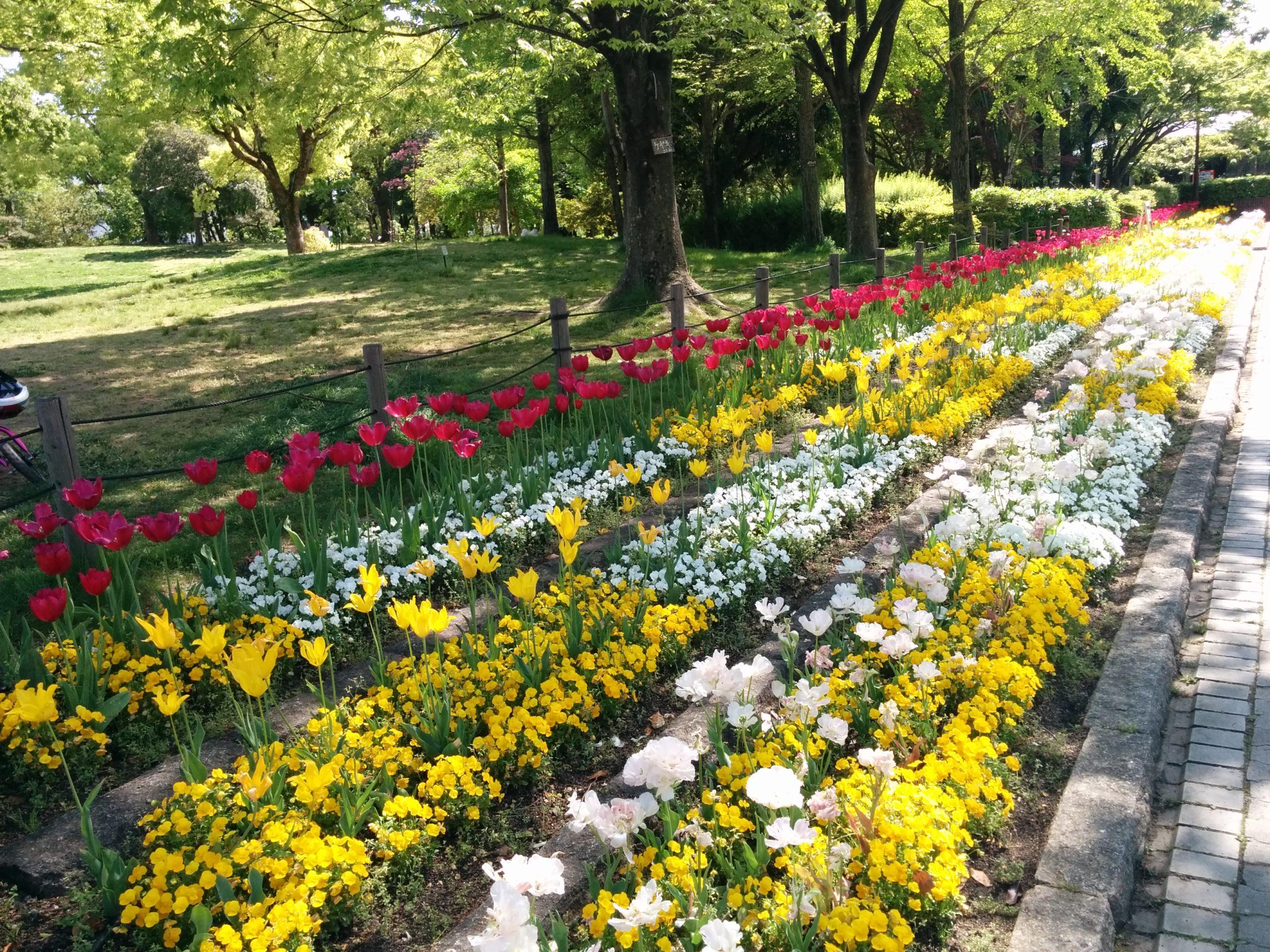 上坂部西公園(兵庫県尼崎市塚口)